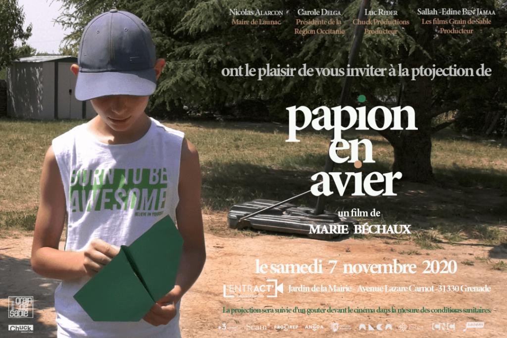 Papion_en_avier